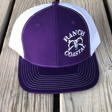 Purple and White Cap